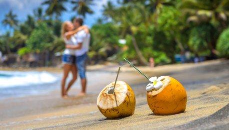 Northeast Experience  e Aruba - Stati Uniti